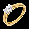 Solitär Ring bicolor